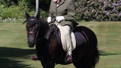 Photo of Впервые за время карантина: королева Елизавета II совершила прогулку верхом на пони